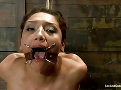 hispanic brunette chick dominated and mouth drilled